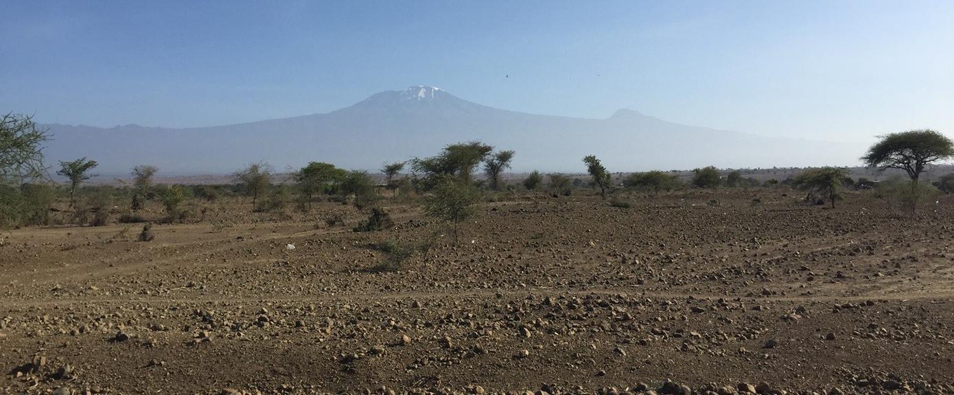 Utsikt til Kilimanjaro fra adkomstveien   Foto: Jørn Stave, Multiconsult
