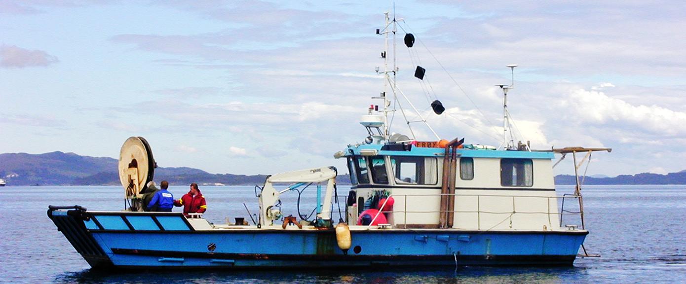 miljøgeologi kompetansenettverk borrebåt borrebass